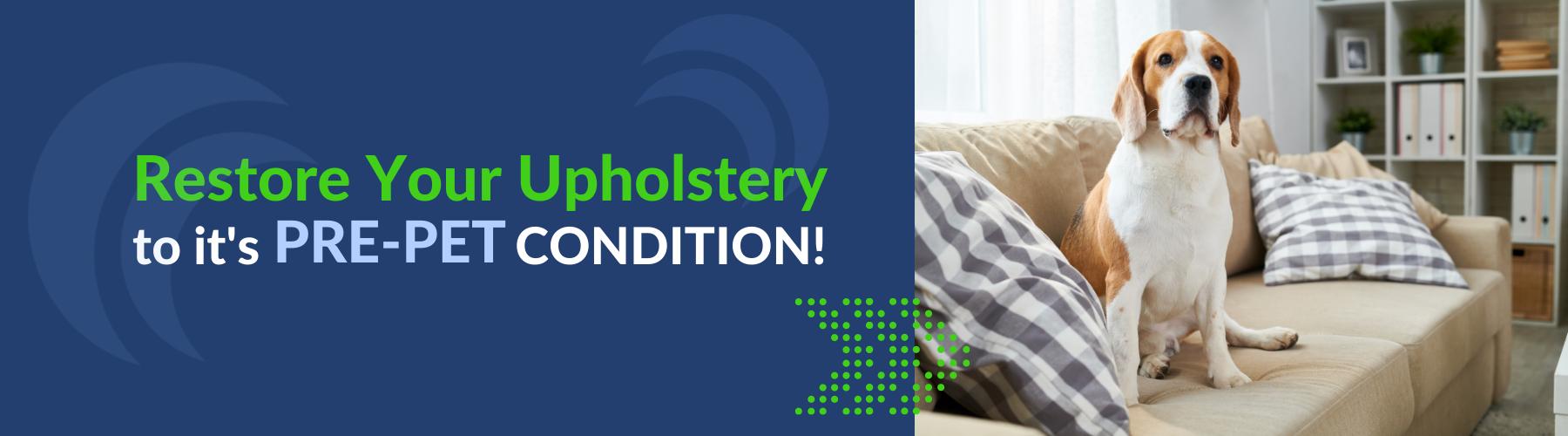 restore upholstery